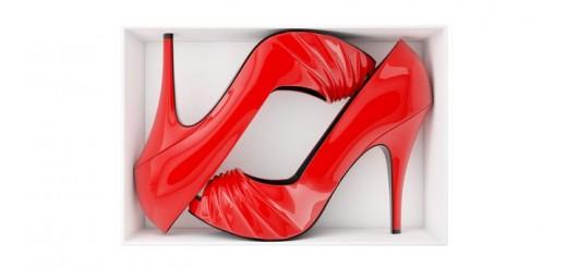 En changeant complètement l'organisation traditionnelle de l'entreprise, Zappos est devenu le n° 1 mondial de la vente en ligne de chaussures. Suppression du marketing, concentration sur la qualité et la vitesse de livraison des produits, mise en avant de l'humain dans les décisions sont à l'origine de son succès.