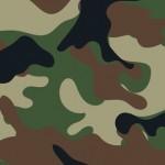 L'armée de Terre fonctionnerait-elle depuis peu comme une entreprise libérée ?