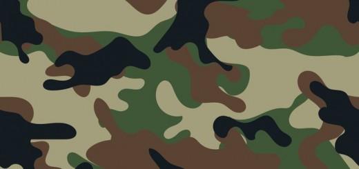 L'armée de Terre, depuis sa professionnalisation a adopté progressivement, un fonctionnement proche de celui d'une entreprise libérée : retour d'expérience.